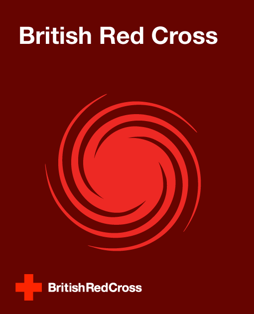 Case-Study---Red-Cross