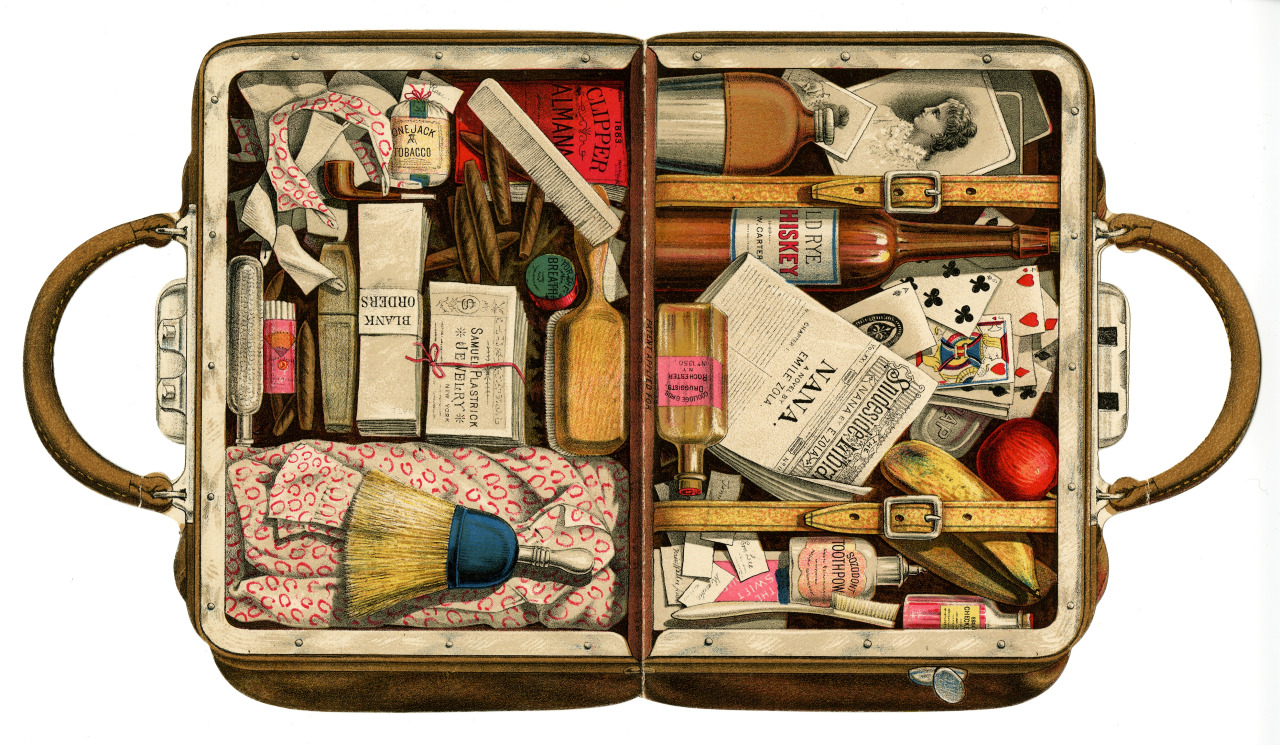 luggage-pic